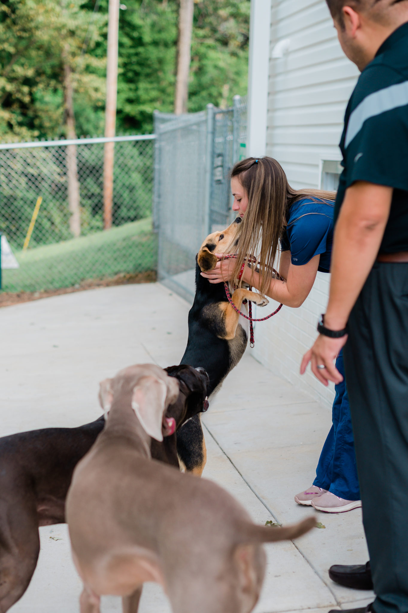 A vet staff members leans down to kiss a dog at the Northwood Animal Hospital.