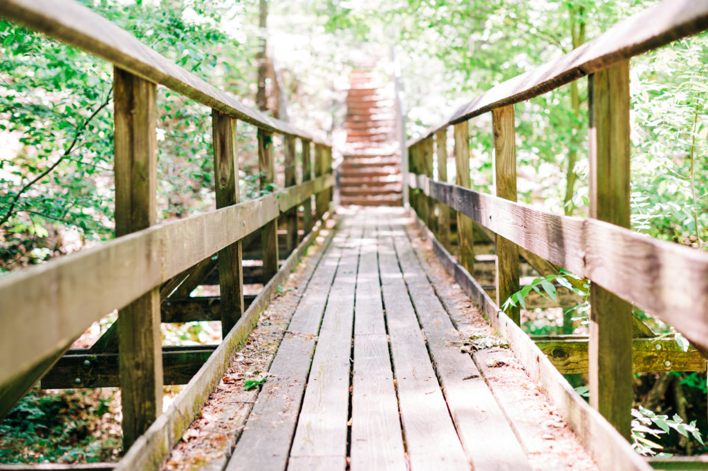 A trail walkway at Piedmont Environmental Center.